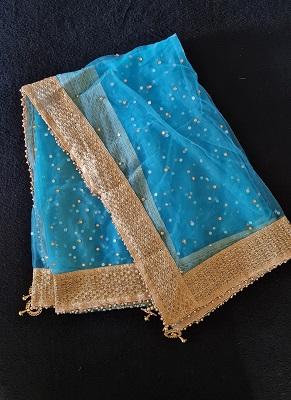 Blue soft Net Dupatta with gold embelished border